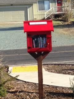 Little Library Lake camanche